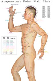 Map of accupuncture points